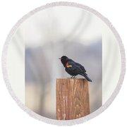Red Wing Black Bird On Post II Round Beach Towel