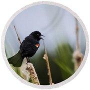 Red Winged Blackbird Singing Round Beach Towel