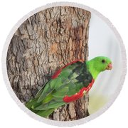 Red-winged Parrot Round Beach Towel