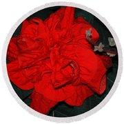 Red Winter Rose Round Beach Towel