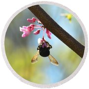 Redbud And The Bumble Round Beach Towel