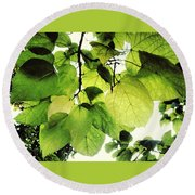 Catalpa Branch Round Beach Towel