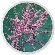 Redbuds Over San Antonio River Round Beach Towel