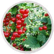 Redcurrant Berries Round Beach Towel