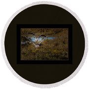 Reddish Egrets Round Beach Towel