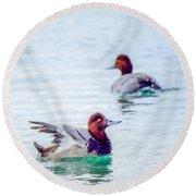 Redhead Ducks Round Beach Towel
