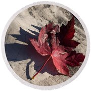 Reds And Purples - Deep Red Maple Leaf And Its Shadow Round Beach Towel