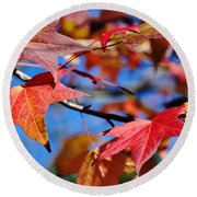 Reds Of Autumn Round Beach Towel