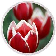 Redwhitetulips6838-1 Round Beach Towel