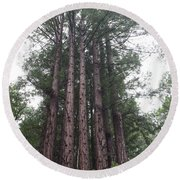 Redwood Fairy Ring Close Round Beach Towel