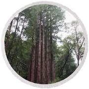 Redwood Fairy Ring Round Beach Towel