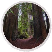 Redwood Round Beach Towel