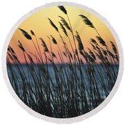 Reeds At Sunset Island Beach State Park Nj Round Beach Towel