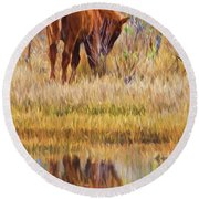 Reflecting Foal Round Beach Towel