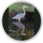Reflecting Great Blue Heron Round Beach Towel