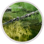 Reflecting Pond Glacier National Park Painted Round Beach Towel