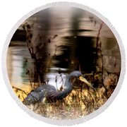 Reflection Of A Heron Round Beach Towel