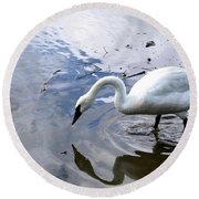 Reflection Of A Lone White Swan Round Beach Towel