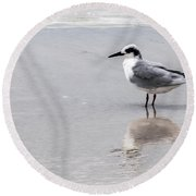 Reflection Of A Tern Round Beach Towel