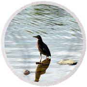 Reflection Of The Green Heron Round Beach Towel