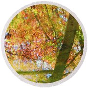 Reflections Of A Colorful Fall 001 Round Beach Towel