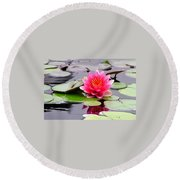 Reflections Of A Pink Waterlily  Round Beach Towel