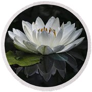 Reflections Of Beauty Round Beach Towel