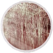 Reflections On Lake Trafford Round Beach Towel