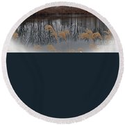 Reflections From Minnesota Round Beach Towel