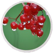 Reflective Red Berries  Round Beach Towel