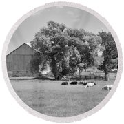 Reive Blvd Barn 15059b Round Beach Towel