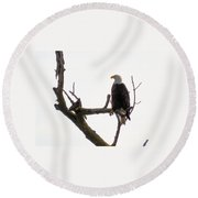 Relaxed Eagle Round Beach Towel