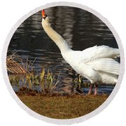 Relaxed Swan Round Beach Towel