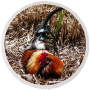 Relaxing Rooster Round Beach Towel