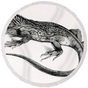 Reptile Round Beach Towel
