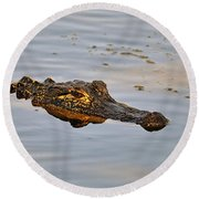 Reptile Reflection Round Beach Towel