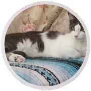 Resting Cat Round Beach Towel