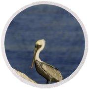 Resting Pelican Round Beach Towel