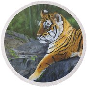 Resting Place - Tiger Cub Round Beach Towel