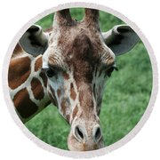 Reticulated Giraffe Round Beach Towel