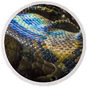 Reticulated Python With Rainbow Scales 2 Round Beach Towel