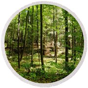 Wooded Path 13 Round Beach Towel