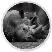 Rhinos Round Beach Towel