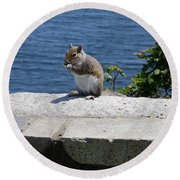 Rhode Island Squirrel Round Beach Towel