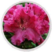 Rhododendron ' Bessie Howells ' Round Beach Towel