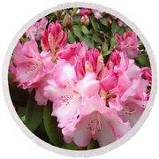 Rhododendron Garden Art Prints Pink Rhodie Flowers Round Beach Towel