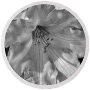 Rhododendron In Black And White Round Beach Towel