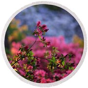 Rhododendron Pink Dream Round Beach Towel