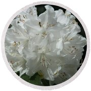 Rhododendron Purity Round Beach Towel