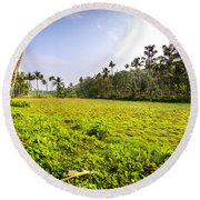 Rice Field Round Beach Towel